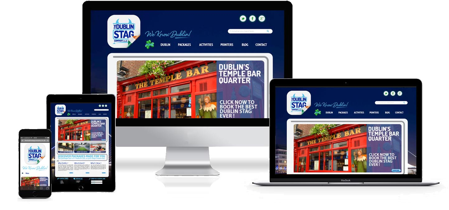 dublin stag company website design project image