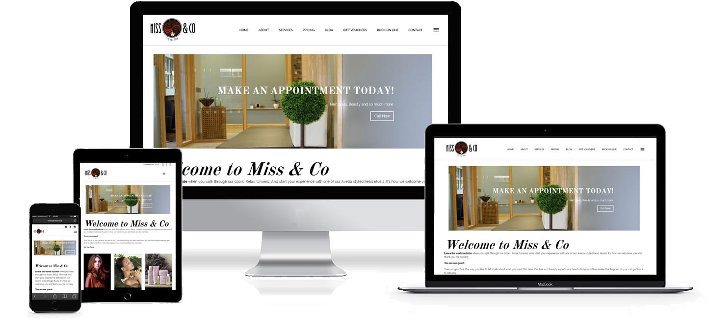 Image and link to Miss and Co Hair & Beauty Salon Waterford Web Site Development